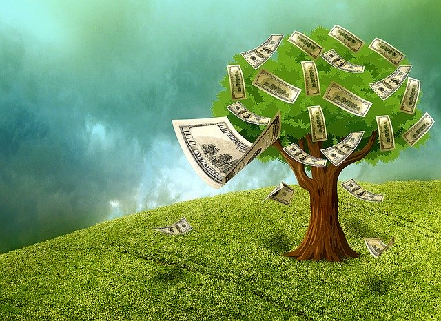 Money tree - the Income generating assets